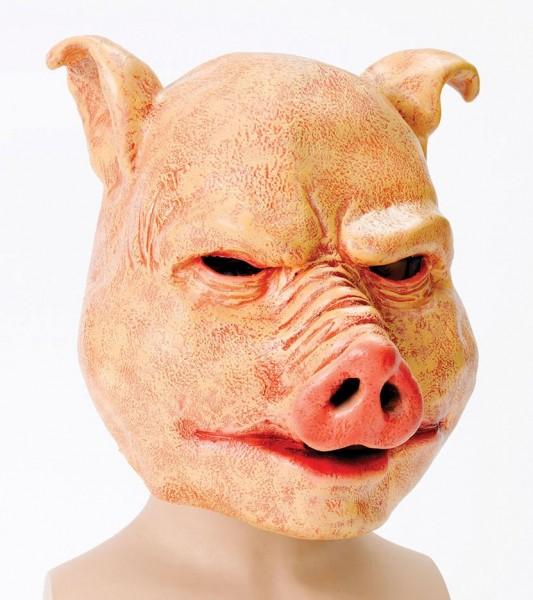 Peau de masque d'horreur de porc