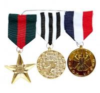Ehren Medaillen Set