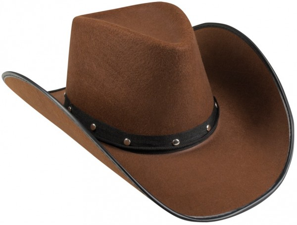 Stylish cowboy hat brown