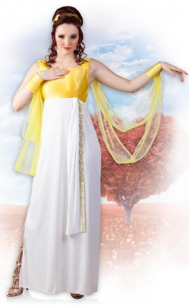 Griekse godin Aphrodite dameskostuum