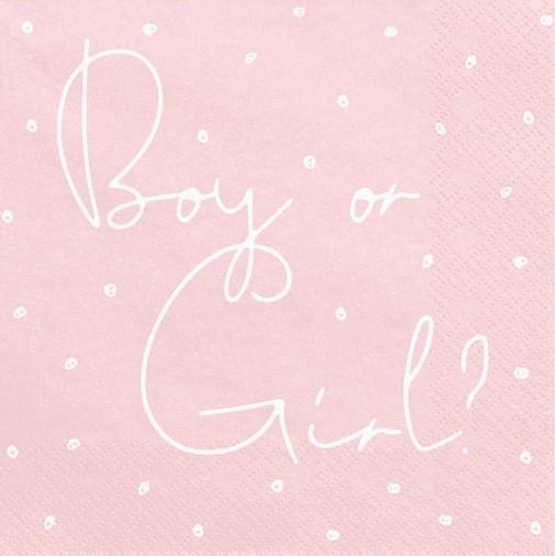 20 Boy or Girl Servietten 33cm