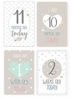 20 Baby Milestone Karten für Jungen