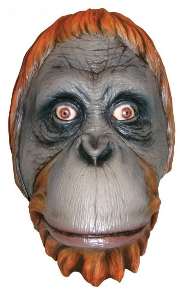Realistisch orang-oetanmasker