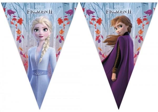 Collana 2 gagliardetti Frozen 2,30m