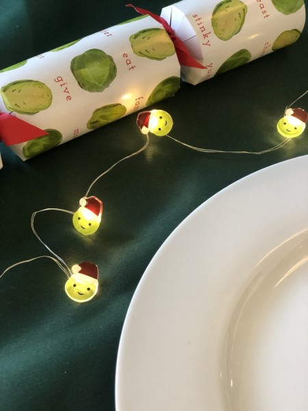 Rosenkohl Christmas Lichterkette 3m