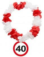 Verkehrsschild 40 Hawaiikette