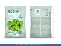 100 Eco Pastell Ballons hellgrün 30cm