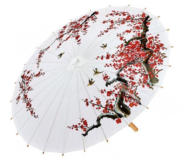 Chinesischer Kirschblüten Schirm