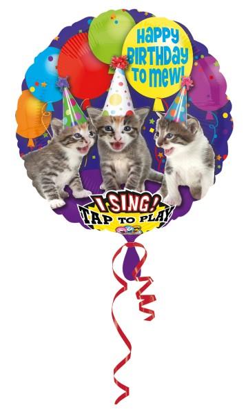 Trío de gatos con globo musical