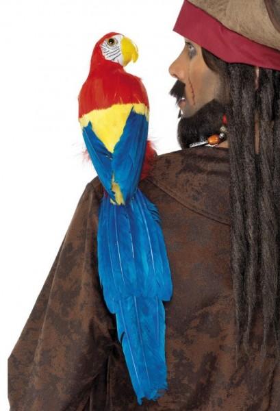 Papagei Mit Gummihalterung 50cm
