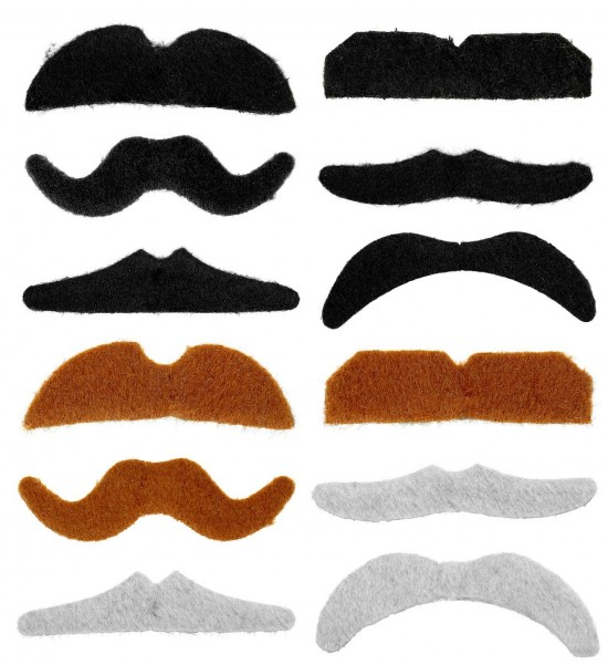Set of 12 beards