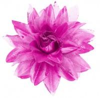 Pinke Blumen Haarspange