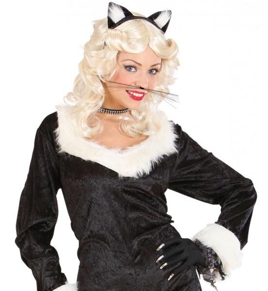 Schwarzer Katzenschnurrbart