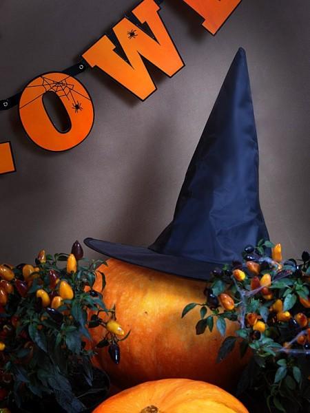 Chapeau de sorcière noir Frieda