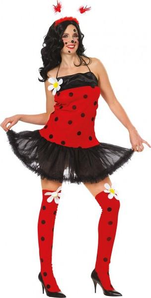 Ruby lieveheersbeestje kostuum