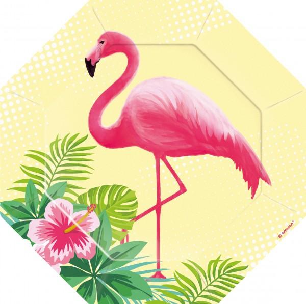 6 platos Flamingo Paradise 18cm