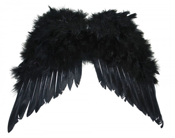 Feder Flügel Schwarzer Engel
