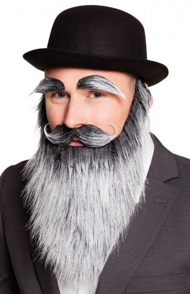 Langer Mysteriöser Bart Mit Augenbrauen