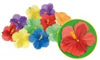 Hawaiiische Hibiscus Blüten 24 Stück