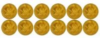12 Piratenschatz Goldmünzen
