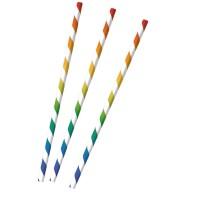 12 gestreifte Papier Strohhalme Regenbogen