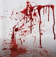 16 Massaker Party Servietten 33cm