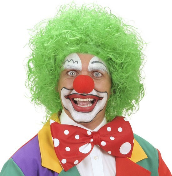 Parrucca verde da clown
