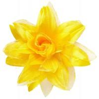Schöne Rosen Haarspange Gelb