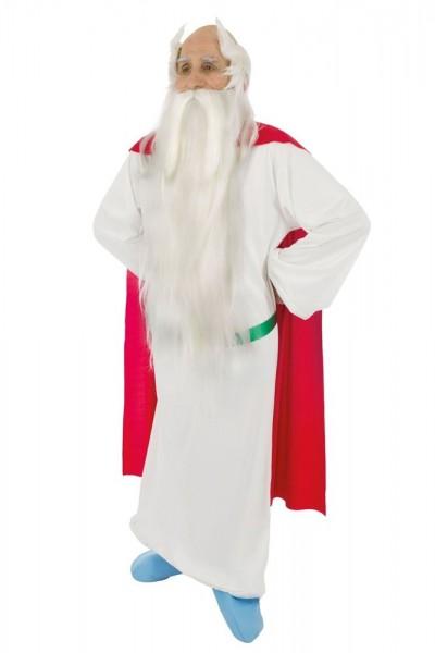 Druide Miraculix Kostüm