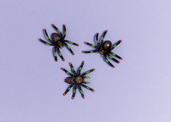 8 Wicked Tischdeko Spinnen