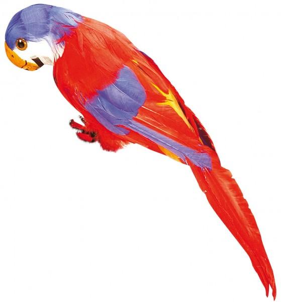 Realistischer Paradies Papagei