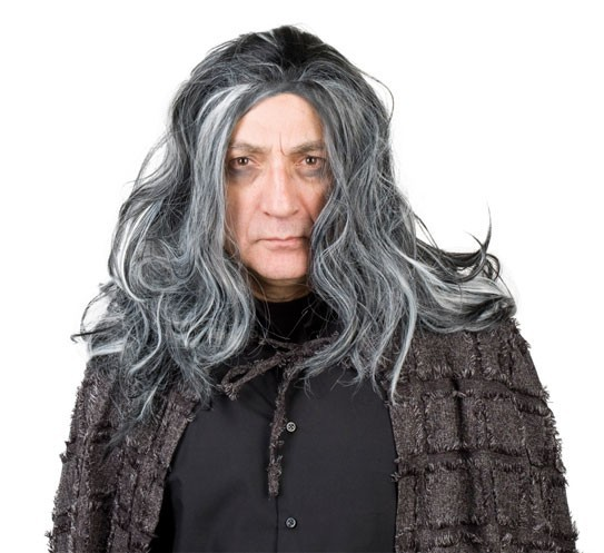 Wig Gray Long Vincent Vampire Halloween