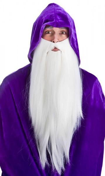 Mystérieux barbe de magicien blanc