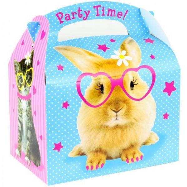 Fashion pets gift box