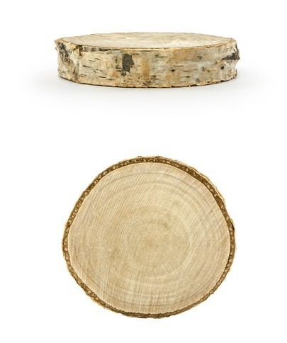 6 wooden discs place cards birch