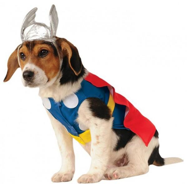Hundekostüm Thor Marvel