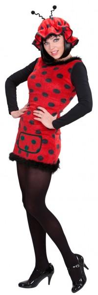 Lieveheersbeestje Katja dames kostuum