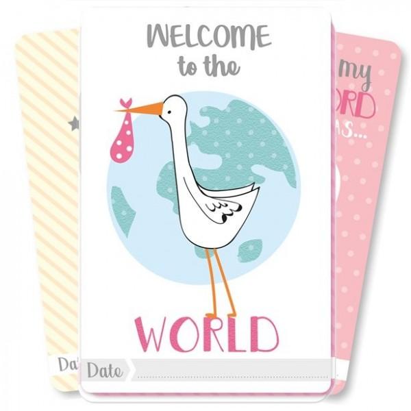 Baby Milestone Karten für Mädchen