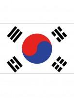 Südkorea Fan Flagge 90 x 150cm