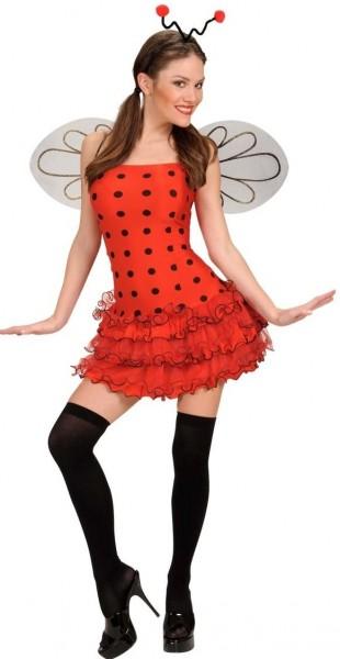 Sexy Marienkäfer Miffy Damenkostüm