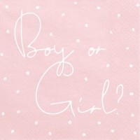 20 Boy or Girl Servietten 33cm