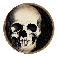 10 Boneyard Pappteller 23cm