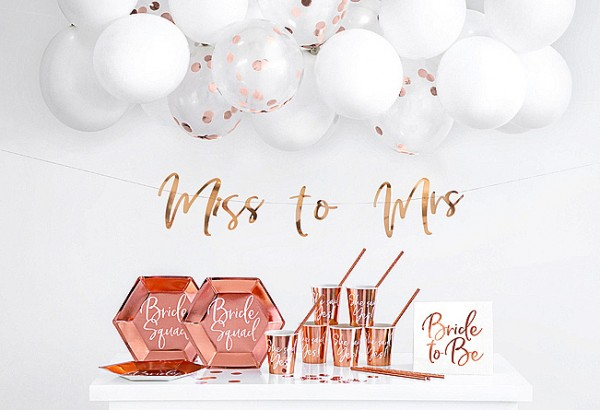 Shiny Bride Partykoffer 60-teilig