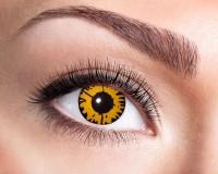 Eye Of The Tiger Kontaktlinse