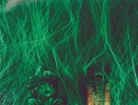 Spinnennetz Grün Mit Spinnen 60g