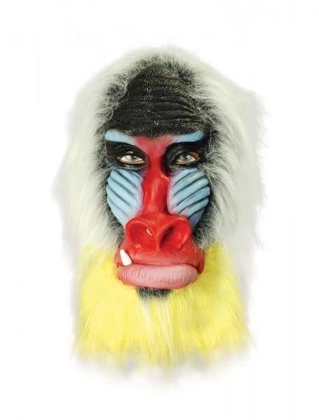 Fariki Mandril aap volledig hoofdmasker