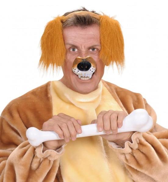 Schnüffel Hunde-Nase