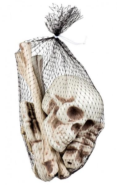 Lo scheletro di 12 parti rimane nella rete