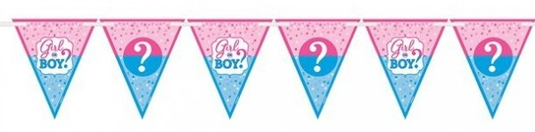 Gender Reveal Pennant Chain 4.5m