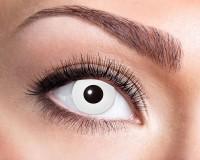 Weißaugen Kontaktlinse 3 Monatslinse